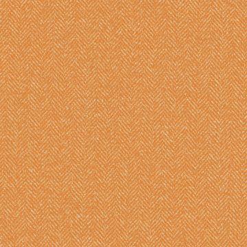 Suit orange