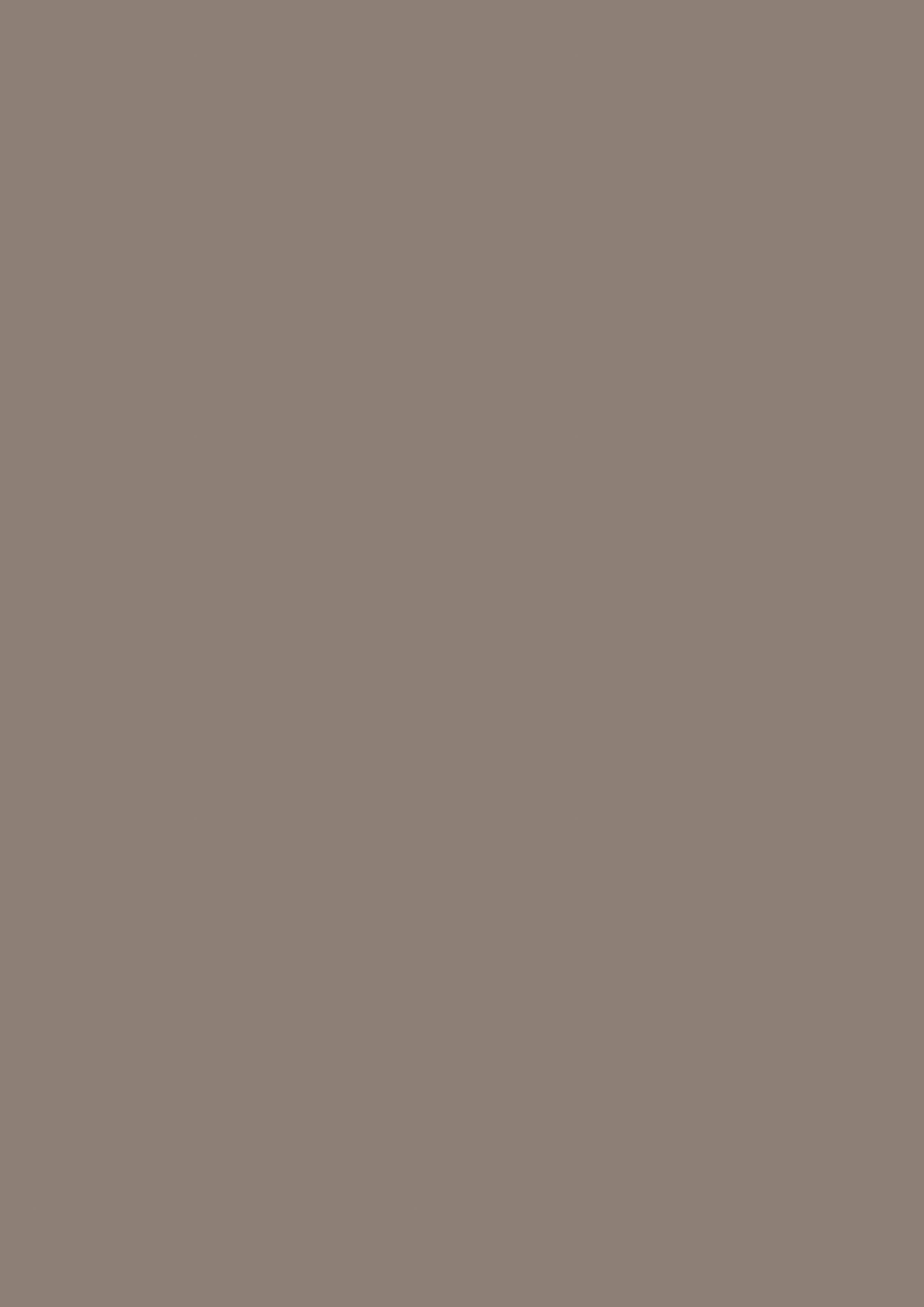 Truffel gray (U1102FG)