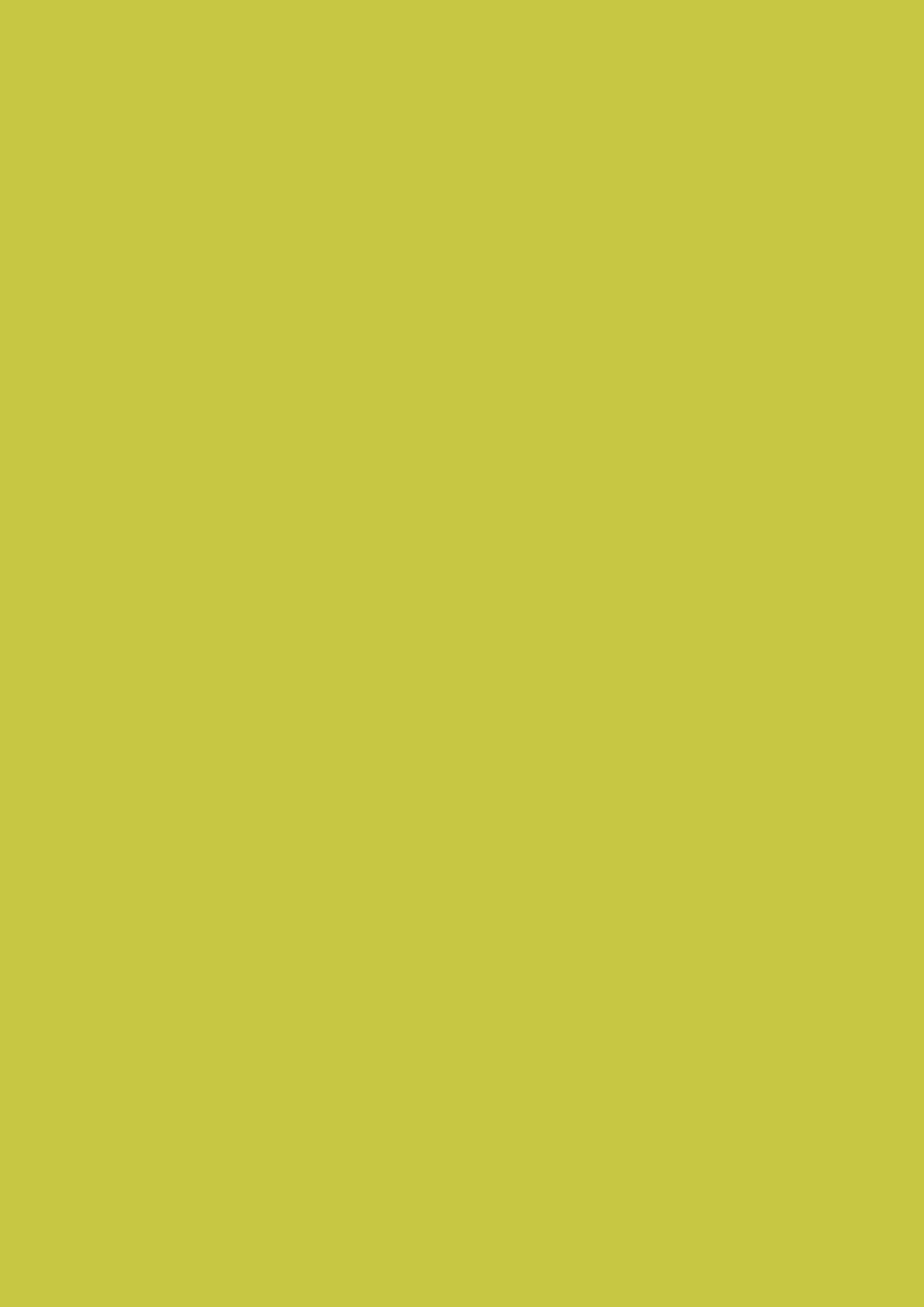 Olive (U1826VV)