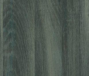 Dark Oak (R4272RT)