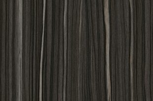 Sulawesi Macassar Black