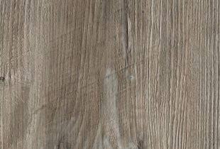 Ponderosa Pine (R4531RT)