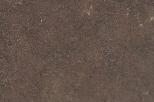 Brown Belmont (R6061FG)
